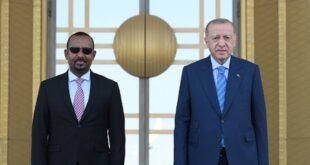 الصورة من موقع رئاسة الجمهورية التركية
